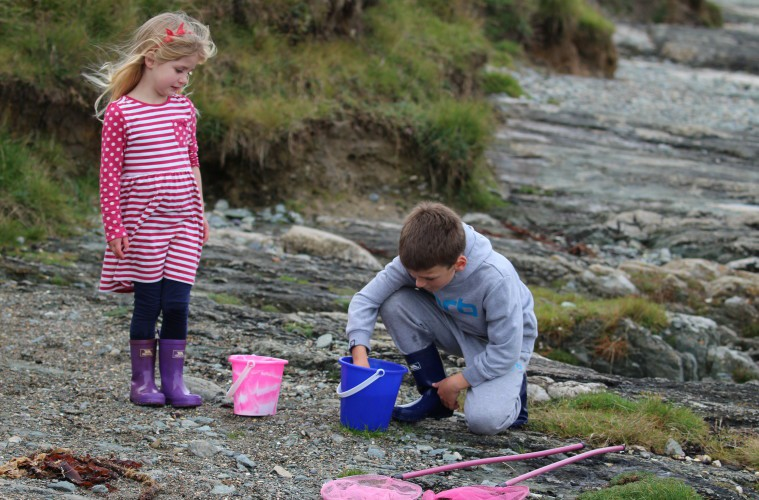 Children engaging with nature