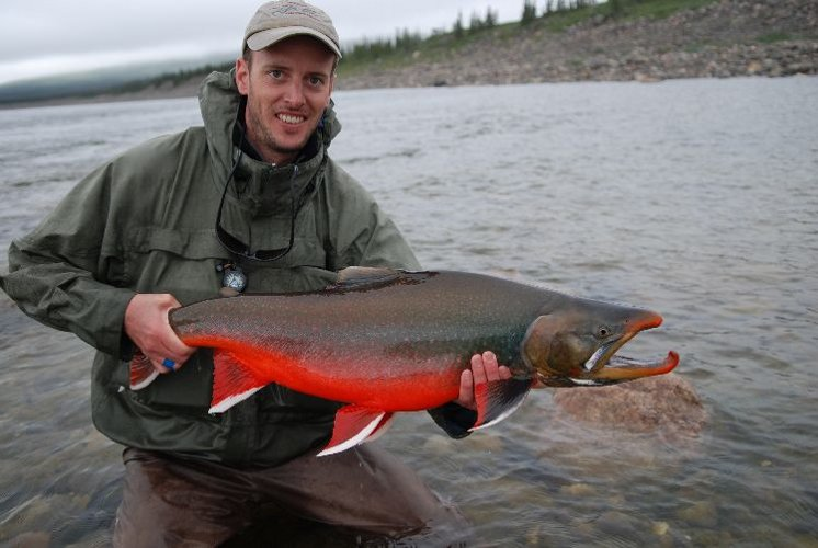 large_male_arctic_char-copyright-nils-rinaldi